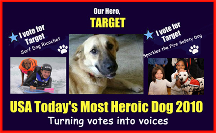 "NOMINEES OF USA TODAY'S ""MOST HEROIC DOG OF 2010"" TURN THEIR VOTES INTO VOICES FOR FELLOW NOMINEE, TARGET. TARGET WAS ERRONEOUSLY EUTHANIZED AFTER SAVING LIVES IN AFGHANISTAN"